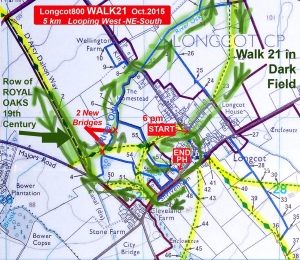 Walk 21